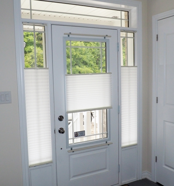 Delightful Decorations Sidelight Window Treatments To Improve Energy Blinds For Sidelights Pics