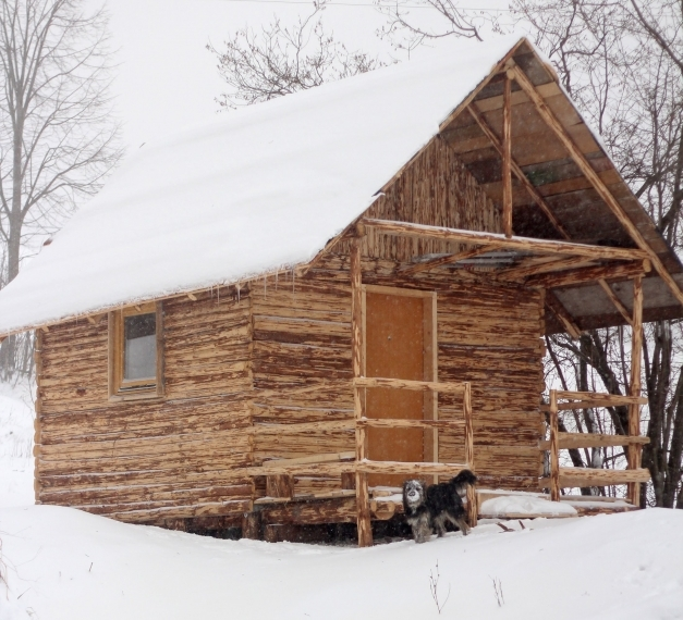Outstanding How We Built Log House Cabin In One Month Youtube Log Cabin Build Pics