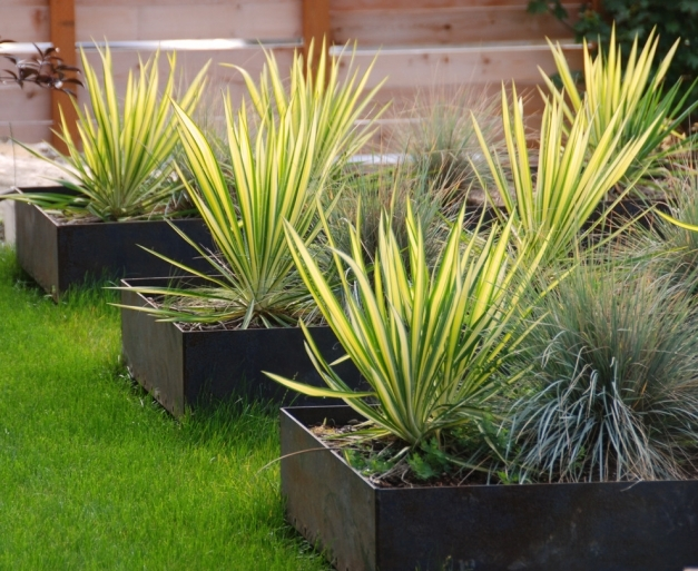 Wonderful Planter Box Ideas Landscaping Landscape Industrial With Turf Boxes Planter Box Ideas Landscaping Image